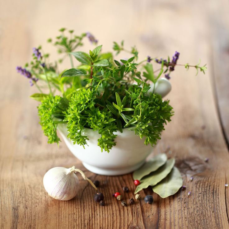 Herbal Apothecary 101Prepare medicines in your kitchen using just a few herbs…