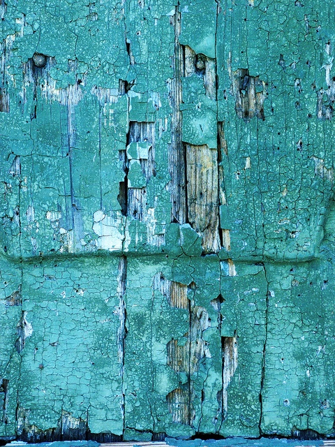 Teal and peeling