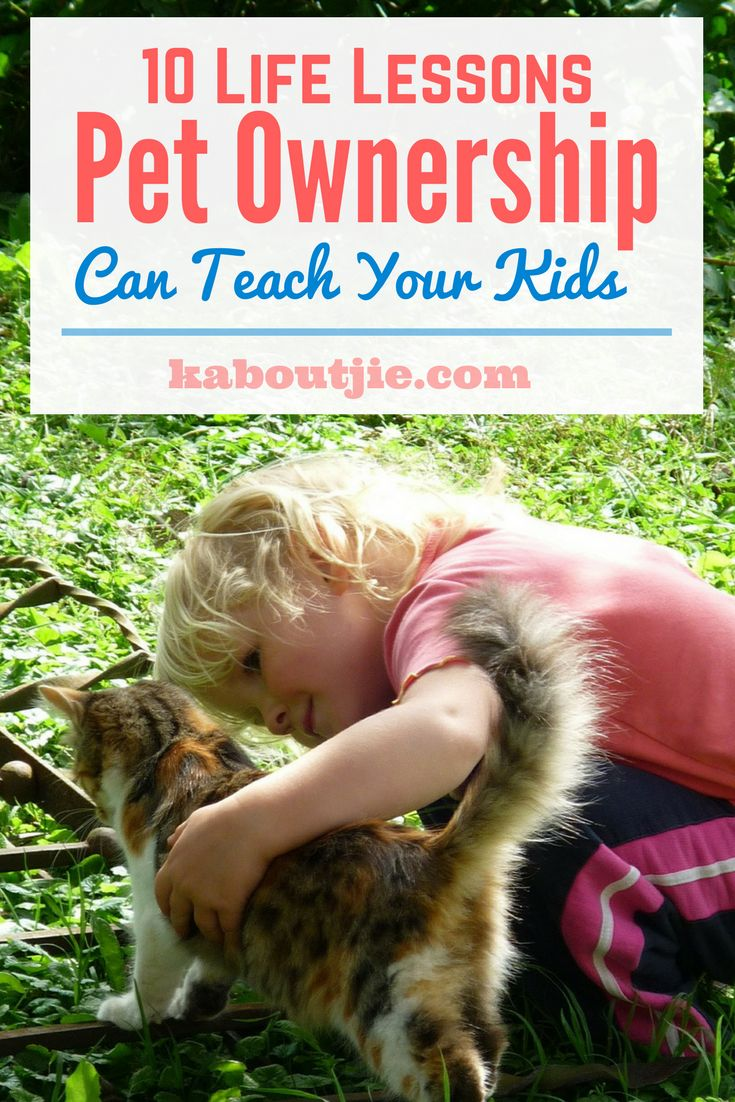 10 Life Lessons Pet Ownership Can Teach Your Kids    Pets aren't just fun and entertaining, they require serious commitment and sense of responsibility. But that's not all; animals play a significant role in your child's development. They teach valuable lessons, and by paying close attention, we can learn how to integrate these lessons into the lives of our children    #guestpost #pets #lessonspetsteachkids #kids