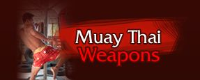 Yokkao Boxing - Muay Thai Gear - Yokkao MMA equipment muay thai :: Lethal points on the human body