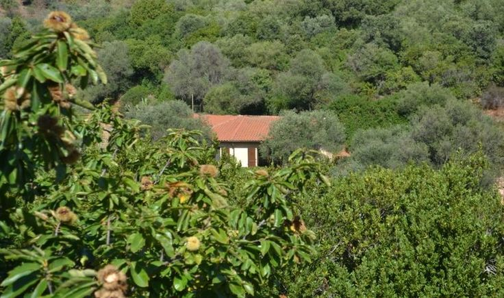 Natuurhuisje 13414 - vakantiehuis in Iglesias