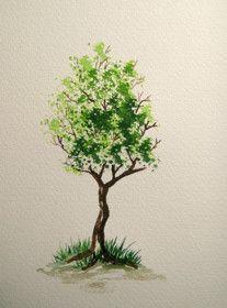 Dein Online Aquarell-Malkurs » Baum-Übung