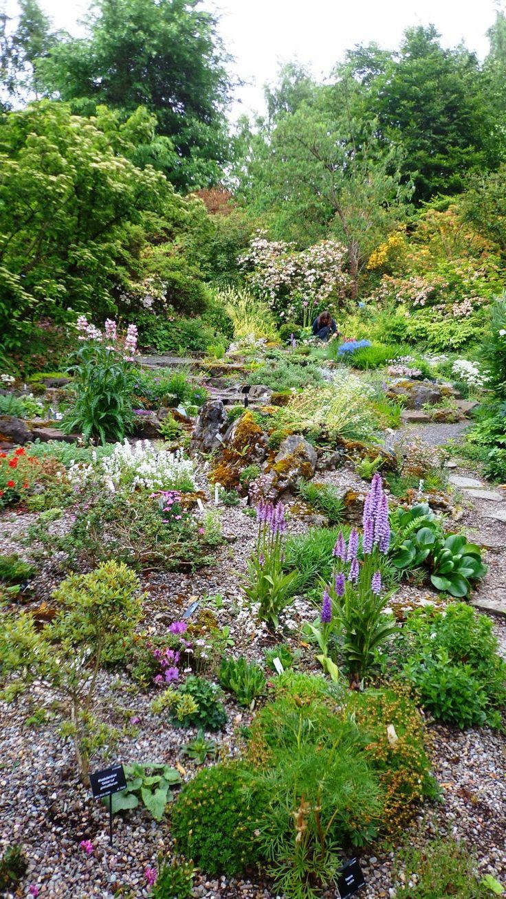Garden Ideas Scotland 229 best garden inspiration & ideas images on pinterest | prairie