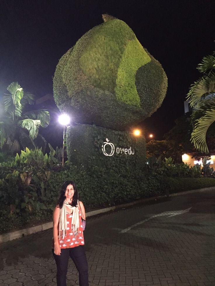 #feriadelasflores Oviedo Medellin