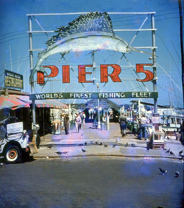 10 best images about miami on pinterest theater plaza for Miami fishing piers