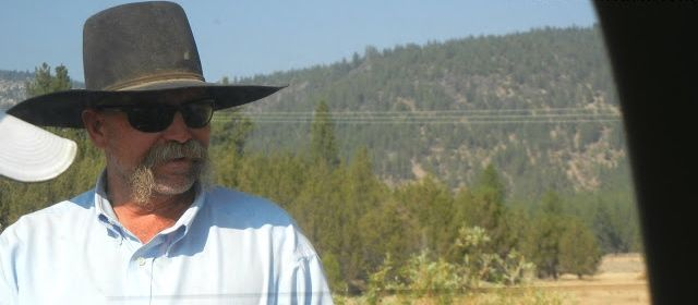 """How Did A Cowboy Named Bud Spot the U S Congressman?  A cowboy named Bud was overseeing his herd in a remote mountainous  Cowboy Cowboy pasture in California when suddenly a brand-new BMW advanced toward him out of a cloud of dust.  The driver, a young man in a Brioni suit, Gucci shoes, RayBan sunglasses and YSL tie, leaned out the window and asked the cowboy, """"If I tell you exactly how many cows and calves you have in your herd, Will you give me a calf?"""""""