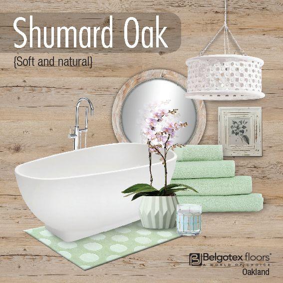 Oakland - Shumard Oak