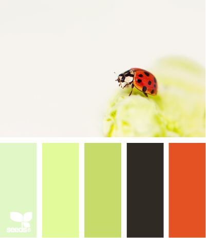 ladybug huesDesign Seeds, Ladybugs Hues, Colors Palettes,  Ladybird Beetles, Colors Schemes, Green Colours In Kitchens, Picture Frames,  Ladybeetle, Pictures Frames