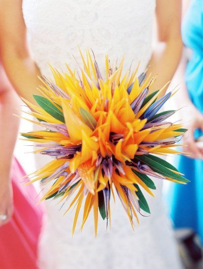 Strelitzia used at weddings - Google Search