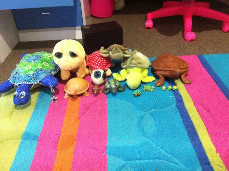 Turtle ring, earring, puzzle, teddy, squinkies, rubber, beads and toys. I love turtles.