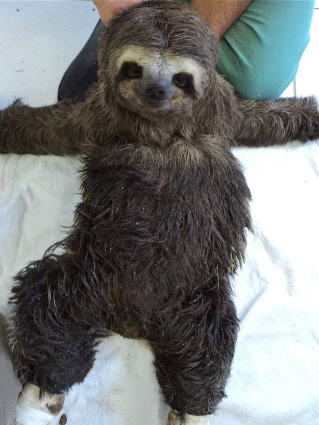 """And was like, """"It's the Ides of March, Bitch""""** 