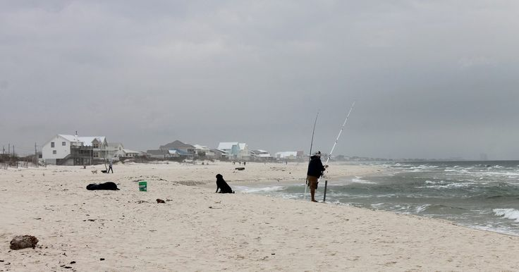 Top 25 ideas about surf fishing on pinterest surf for Saltwater shore fishing tips
