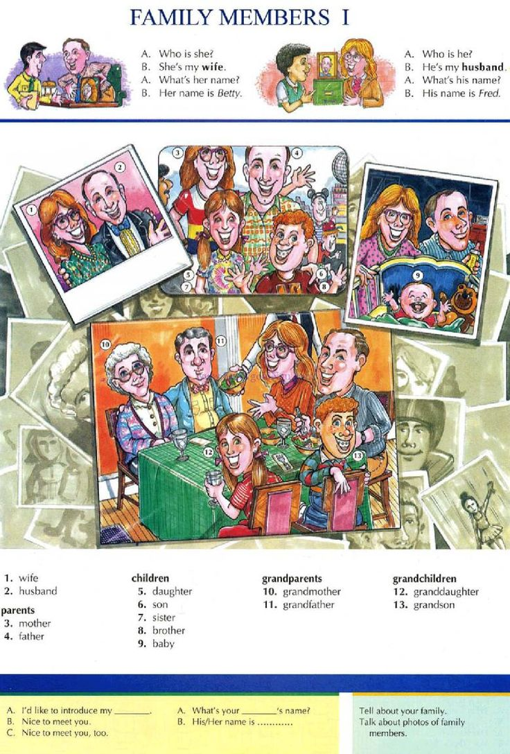 2 - FAMILY MEMBERS 1 - Pictures dictionary - English Study, explanations, free exercises, speaking, listening, grammar lessons, reading, writing, vocabulary, dictionary and teaching materials