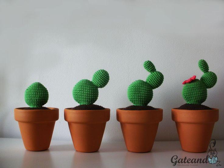 Amigurumi Cactus Tejido A Crochet Regalo Original : Best cactus images succulents cacti and cactus