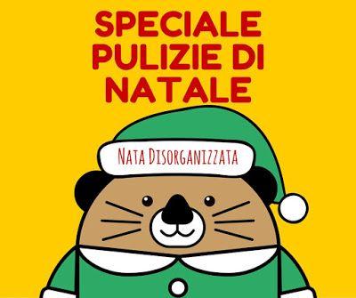 Nata disorganizzata: Speciale pulizie di Natale: introduzione