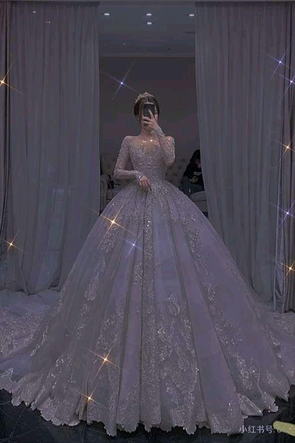 شيطان العشق هوس مالك Gowns Sparkle Wedding Dress Princess Ball Gowns