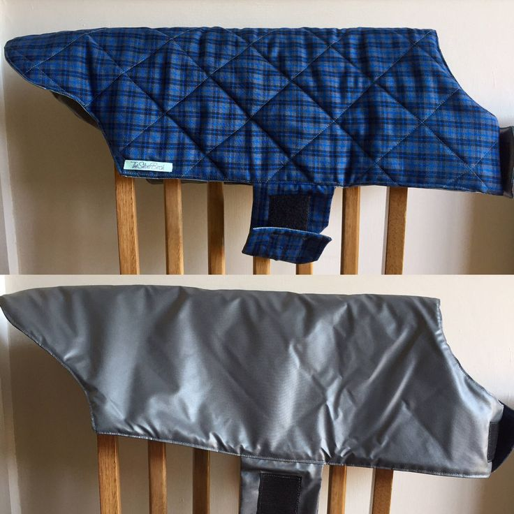A personal favourite from my Etsy shop https://www.etsy.com/uk/listing/508742494/waterproof-dog-coat-reversible-dog-coat