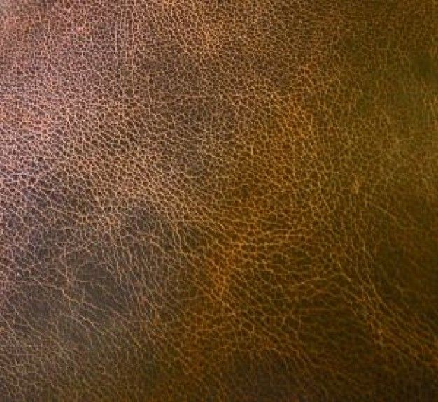 leather texture Free Photo