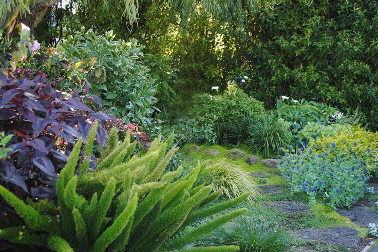 Rebecca's Front Garden | Harmony in the Garden