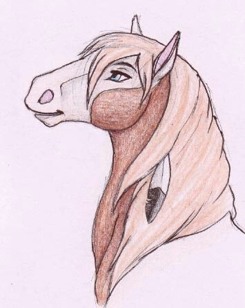 Horse drawings, Dreamworks Spirit