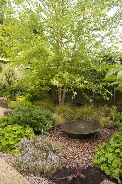 An overflowing bowl fountain set on gravel, with flowing sedges behind. Gorgeous! From Rhone Street Gardens.