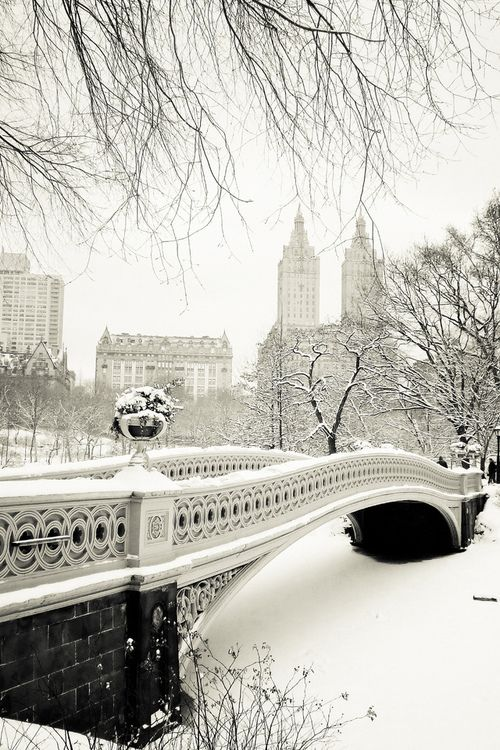 Central Park! So beautiful with snow!