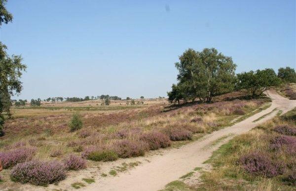Wandelroute via De Duvelskuulroute in het Nationaal Park