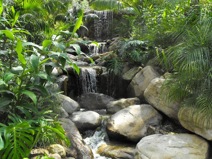 313 best tropical water features images on pinterest for Garden waterfall design