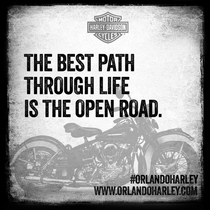 Harley Davidson Quotes 114 Best Biker Quotes Images On Pinterest  Motorcycle Motorcycle