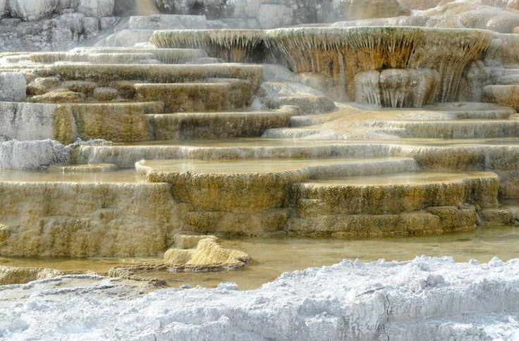 See Mammoth Hot Springs, Yellowstone National Park, Wyoming - TripBucket