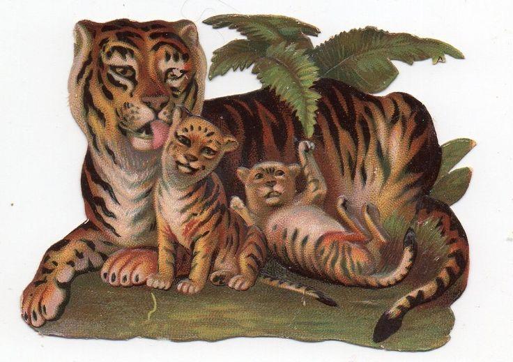 Chromo découpi die cut oblaten glanzbild scrap -  Maman tigre et ses bébés - 8cm