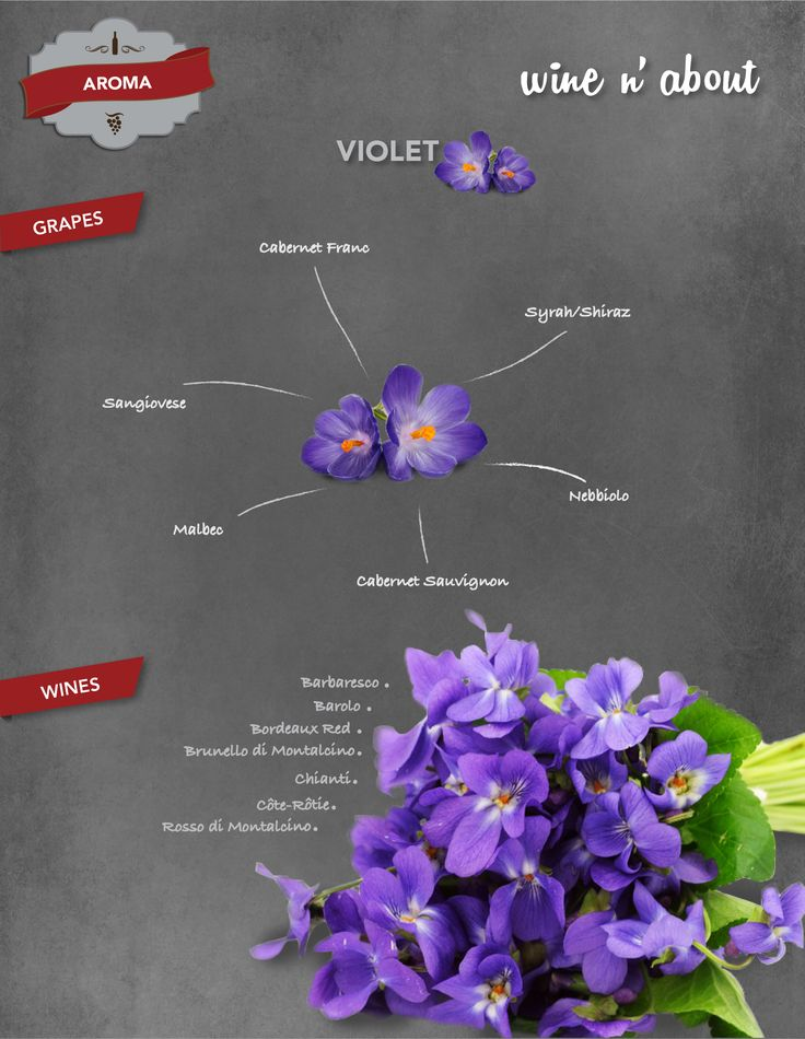 AROMA: Violet