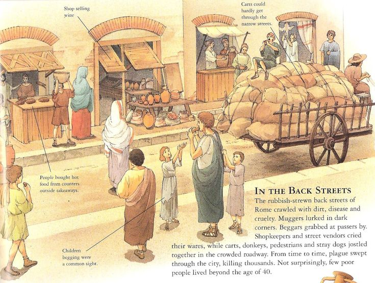 an introduction to the life in ancient rome Life in ancient rome has 77 ratings this is more of an introduction you can't help but pick up a lot of the contextual details of everyday life in rome.