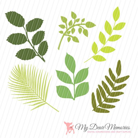 flower leaf clipart - photo #46