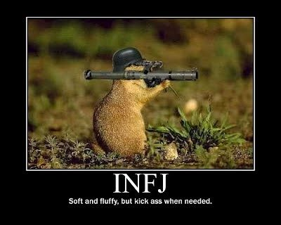Idk what infj is but this pic made me crack up  and the description is pretty accurate of me either way LOL
