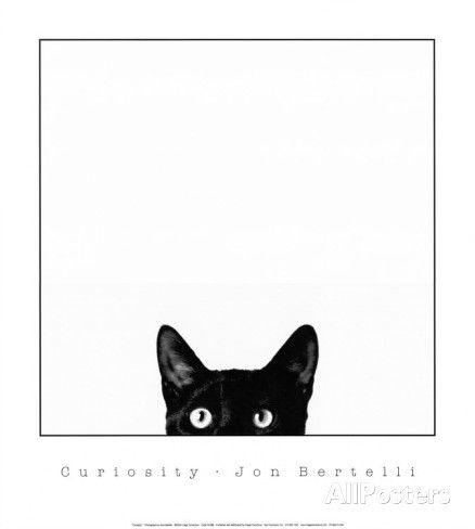 Curiosité Affiches par Jon Bertelli sur AllPosters.fr