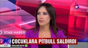 Kız çocuklarını Pitbull dehşetinden Polis böyle kurtardı