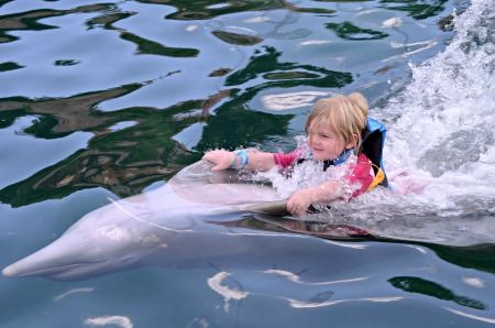 Sweet baby riding a dolphin! Wow!