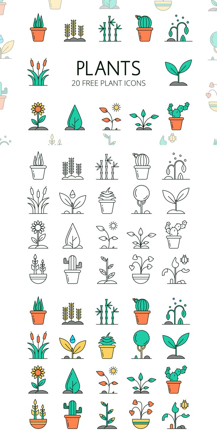 We publish for you the Plants Vector Free Icon Set…