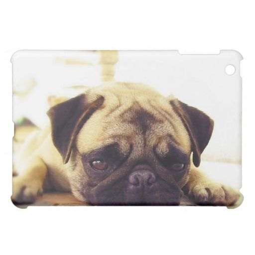 >>>Low Price          	Pug Puppy Laying on the Ground looking Sad Case For The iPad Mini           	Pug Puppy Laying on the Ground looking Sad Case For The iPad Mini This site is will advise you where to buyThis Deals          	Pug Puppy Laying on the Ground looking Sad Case For The iPad Mini ...Cleck Hot Deals >>> http://www.zazzle.com/pug_puppy_laying_on_the_ground_looking_sad_ipad_mini_case-256044782948617811?rf=238627982471231924&zbar=1&tc=terrest
