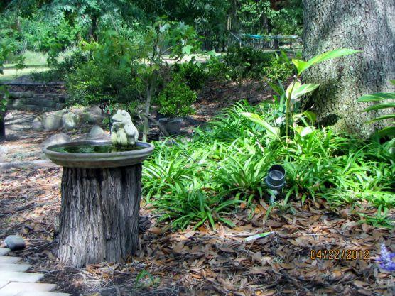 Bird bath tree stump coverup
