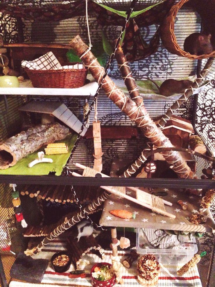 Rat cage, critter nation, forest theme, rat DIY