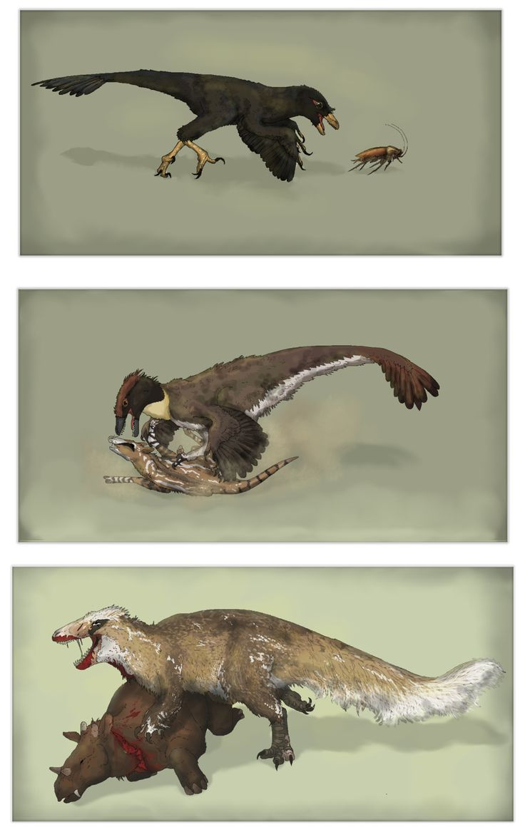 Cenozoic Age Of Raptors By Sheather888 On Deviantart