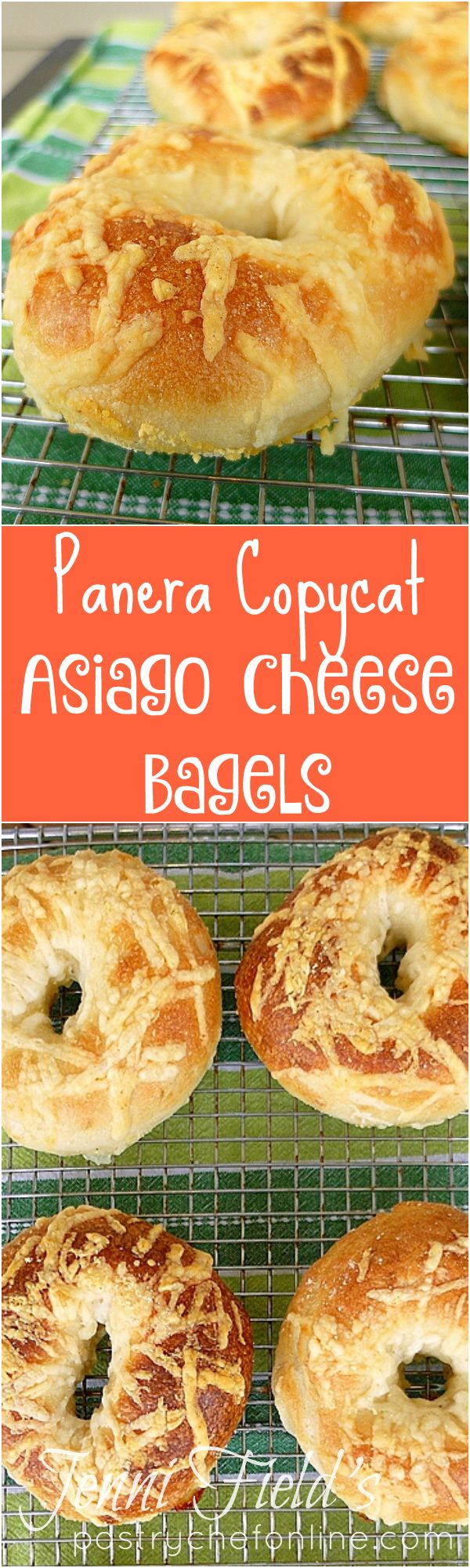 These Panera copycat Asiago Cheese Bagels will satisfy the bagel lover in you. And the cheese lover! If you have always wanted to make homemade bagels. this asiago cheese bagel recipe is a great place to start! | pastrychefonline.com