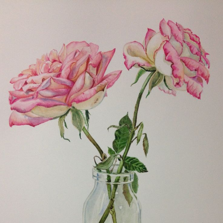 Pink roses in a glass bottle on a blue and white ceramic, 24.4 x 38.5 cm., Watercolour on paper.