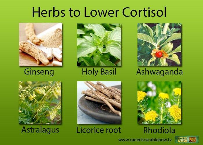Natural Food For Adrenal Fatigue