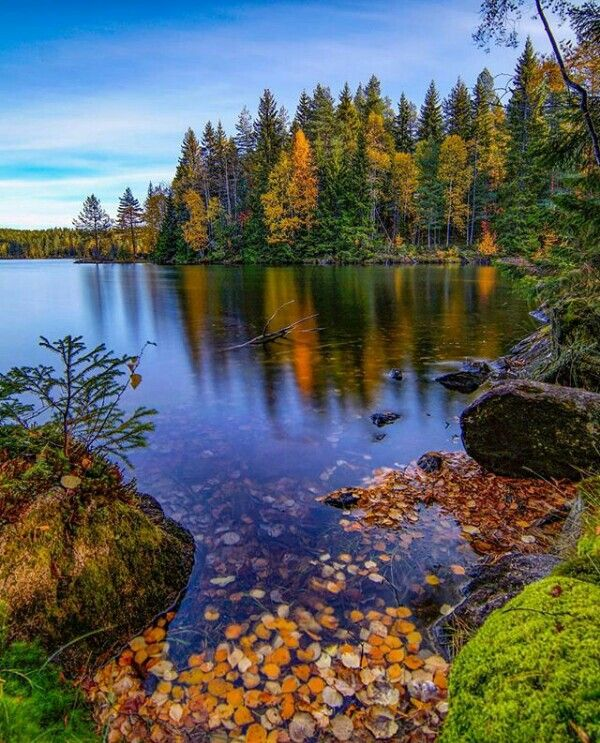 Pin By Morgan On My Likes Beautiful Nature Beautiful Landscapes Nature Photography