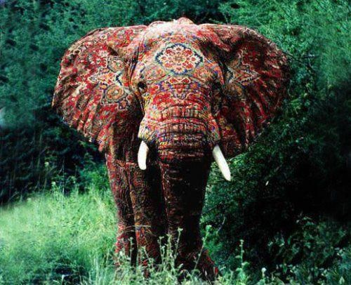 African Elephant with Indian patterned paintings.