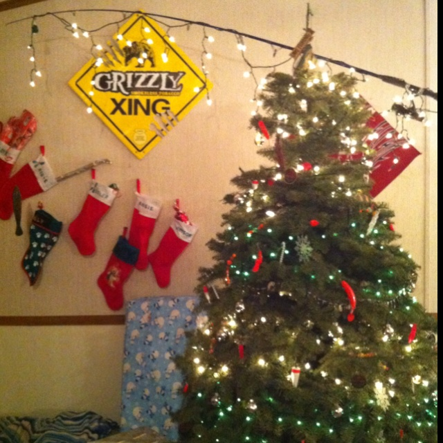 Christmas Tree Decorations Facebook: 1000+ Images About Fishing Themed Christmas On Pinterest