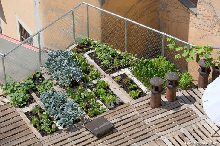 184 best images about potager on pinterest gardens raised beds and belle
